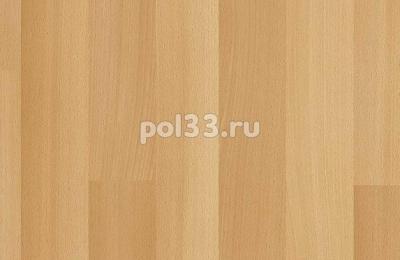 Ламинат Kastamonu коллекция Floorpan Purple Бук Элмор FP006