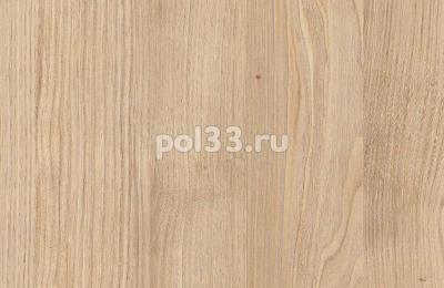 Ламинат Kastamonu коллекция Floorpan Blue Маверик FP0042