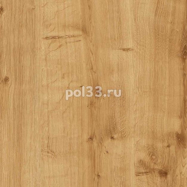 Ламинат Kastamonu коллекция Floorpan Purple Дуб Берлингтон светлый FP005 купить в Калуге по низкой цене