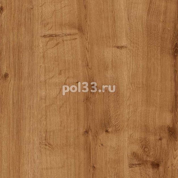 Ламинат Kastamonu коллекция Floorpan Purple Дуб Берлингтон темный FP004 купить в Калуге по низкой цене