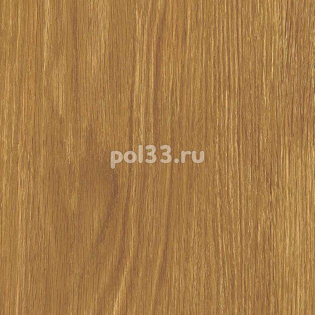 Ламинат Kastamonu коллекция Floorpan Purple Дуб Колорадо FP002 купить в Калуге по низкой цене