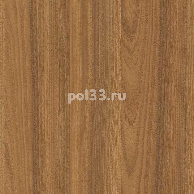 Ламинат Kastamonu коллекция Floorpan Yellow Динелли FP017 купить в Калуге по низкой цене