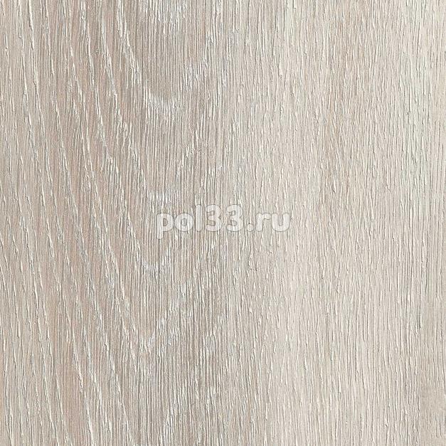 Ламинат Kastamonu коллекция Floorpan Yellow Дуб Пепельный FP011 купить в Калуге по низкой цене