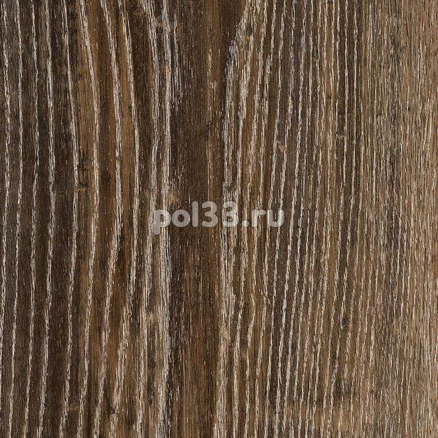 Ламинат Kastamonu коллекция Floorpan Blue Дуб Каньон черный FP0037 купить в Калуге по низкой цене