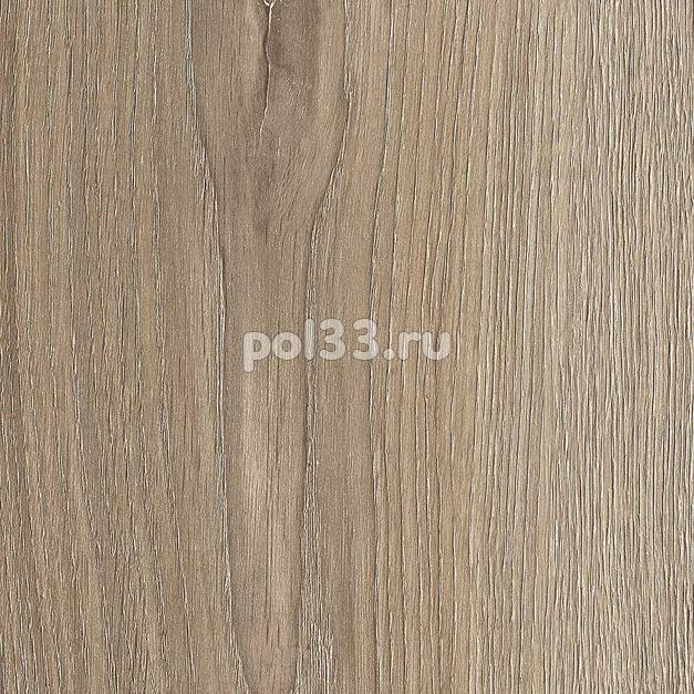 Ламинат Kastamonu коллекция Floorpan Blue Дуб Луанда FP0038 купить в Калуге по низкой цене
