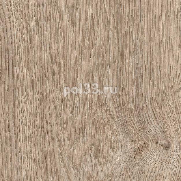 Ламинат Kastamonu коллекция Floorpan Blue Дуб Палермо классический FP0040 купить в Калуге по низкой цене