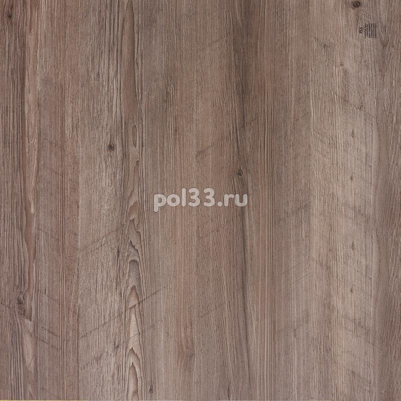 Ламинат Balterio коллекция Dolce Осина каппучино 753 / DOL DK753 купить в Калуге по низкой цене