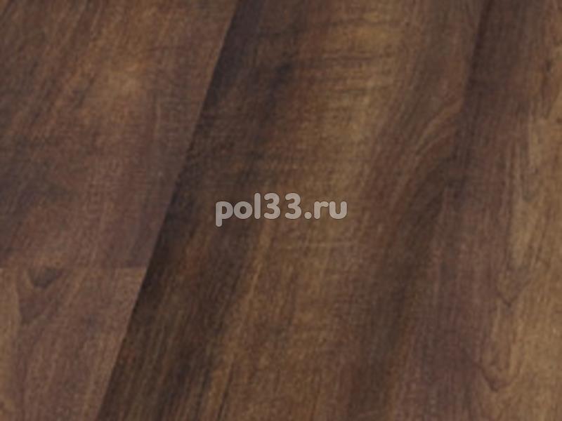 Ламинат Balterio коллекция Traffic Клен шоколадный 793 / TFC DK793 купить в Калуге по низкой цене