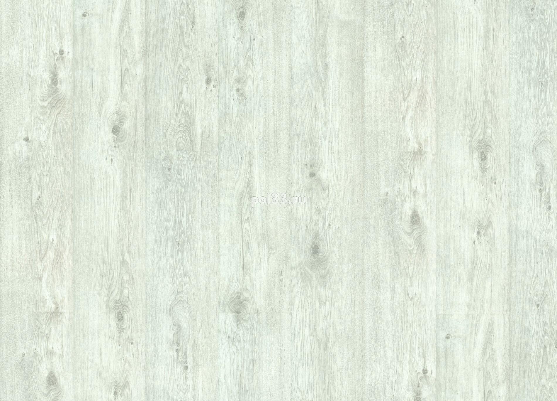 Ламинат Balterio коллекция Vitality Diplomat Дуб белый промасленный 619 -DK / DIP DK619 купить в Калуге по низкой цене