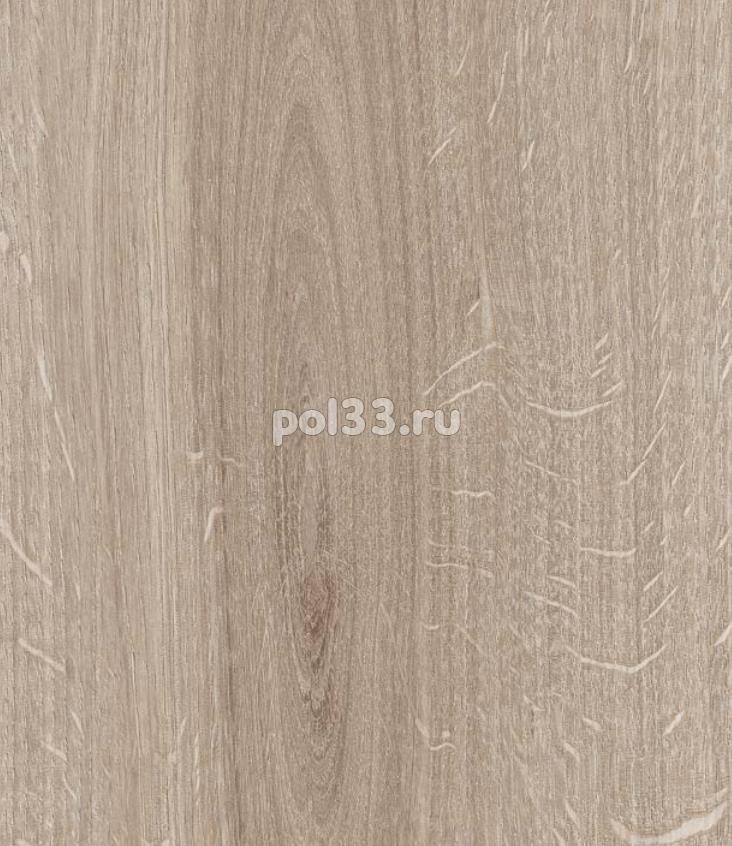 Ламинат Kastamonu коллекция Floorpan Red Дуб каньон светлый FP0024 купить в Калуге по низкой цене