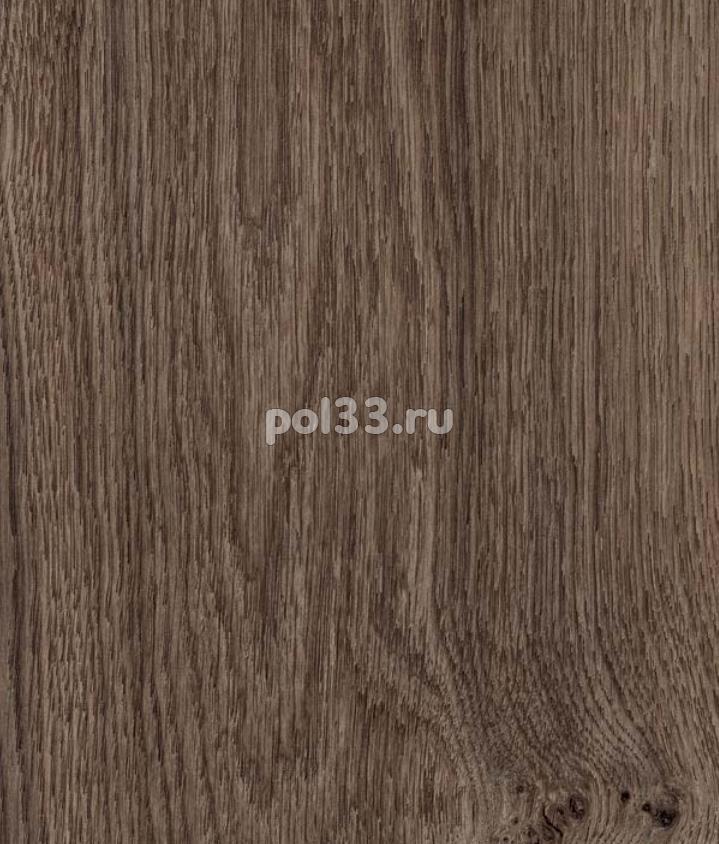Ламинат Kastamonu коллекция Floorpan Red Дуб тёмный шоколад FP0036 купить в Калуге по низкой цене